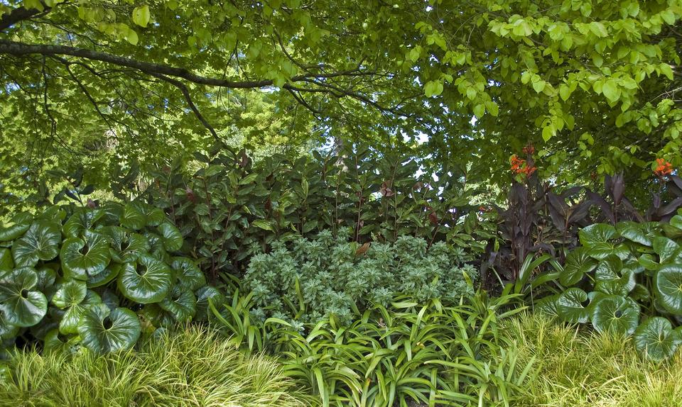 Public garden redesign
