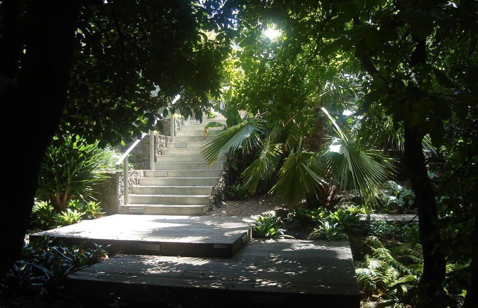 Sub-tropical garden, Auckland